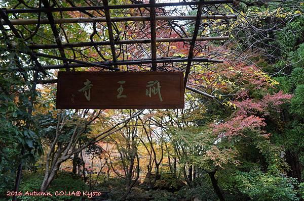 09-祇王寺 01.JPG