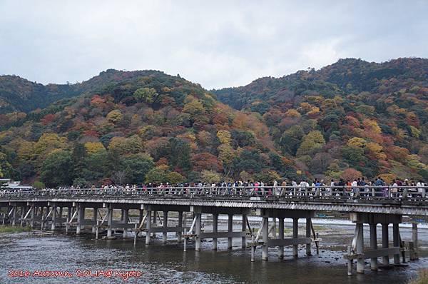 11-渡月橋 03.JPG