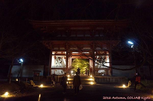 14-醍醐寺 01.JPG
