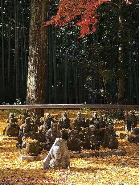 16-赤山禪院 01.JPG