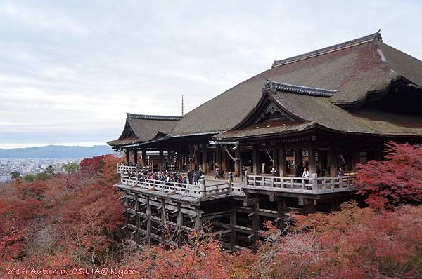 19-清水寺 01.JPG