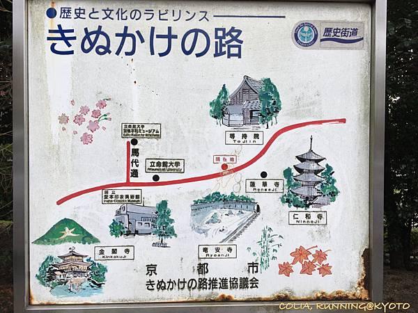 嵐山 LSD 017.jpeg
