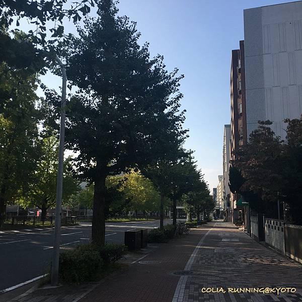 往植物園 04.JPG