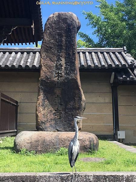 京都一周 017.JPG