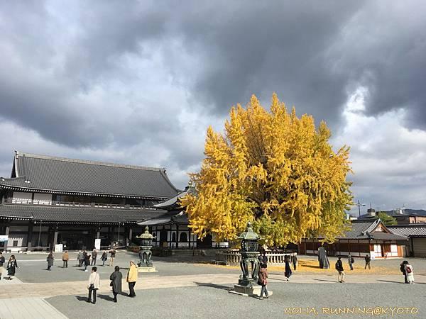 東西本願寺 06.JPG