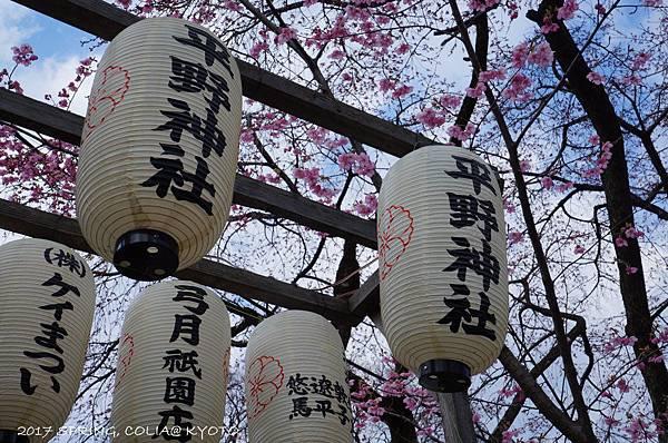 170403-平野神社-1.JPG