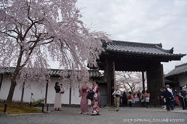 170406-醍醐寺-2.JPG