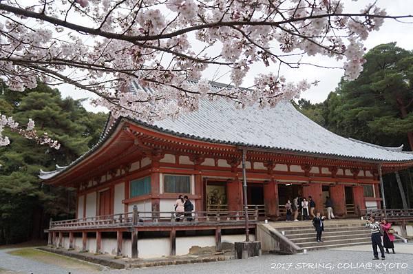 170406-醍醐寺-8.JPG