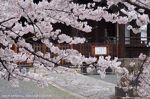 170409-立本寺-2.JPG