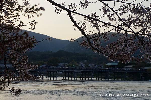 170414-嵐山.JPG