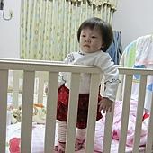 一歲兩個月.JPG