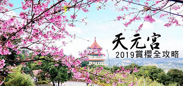 台北賞櫻。淡水無極天元宮2019全新攻略