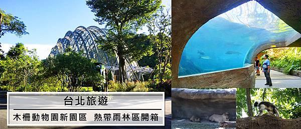 台北旅遊。木柵動物園新園區  熱帶雨林區開箱