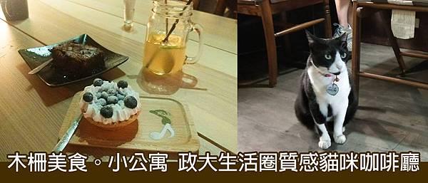 木柵美食。小公寓  政大生活圈質感貓咪咖啡廳