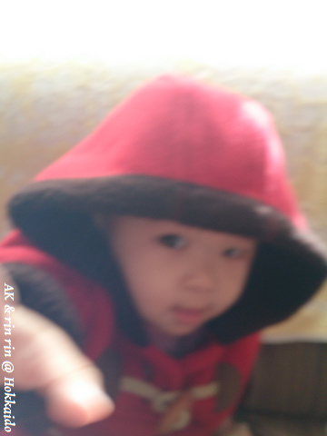 nEO_IMG_DSC_0115.jpg