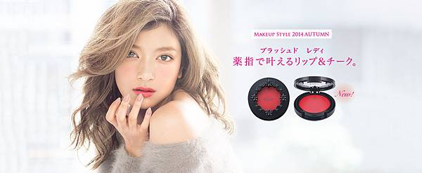 makeup2014autumn