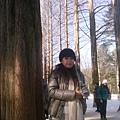 IMG_20121225_110219.jpg