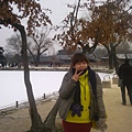 IMG_20121228_101506.jpg