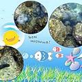 Coral Seabed.jpg
