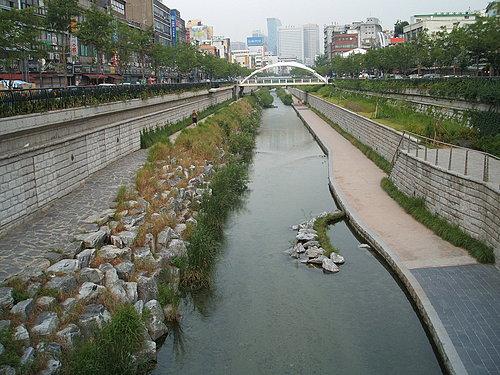 清溪川 生態工法