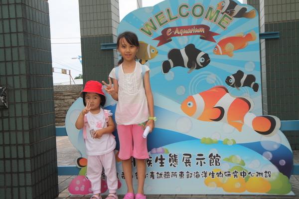 我們來看小丑魚