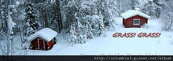 d0090294_22451886B-cropaa1.jpg