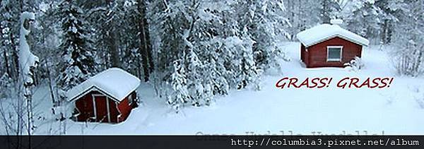 d0090294_22451886B-cropaa2.jpg