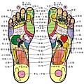 人體腳底穴道按摩圖_穴位對應反射區(腳底痛時超實用的-好處多多)