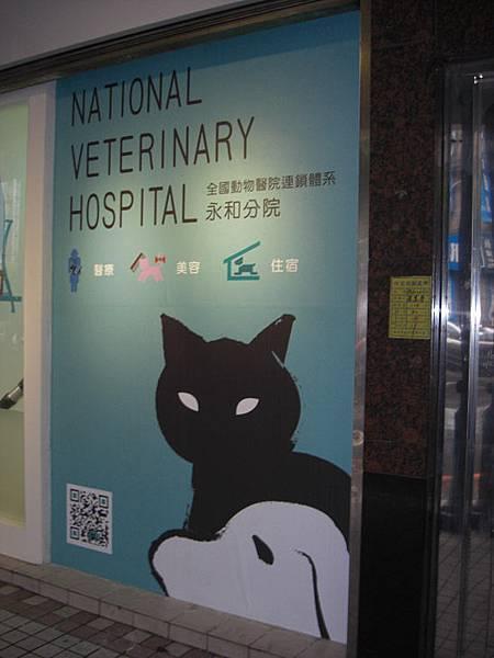 動物醫院-03