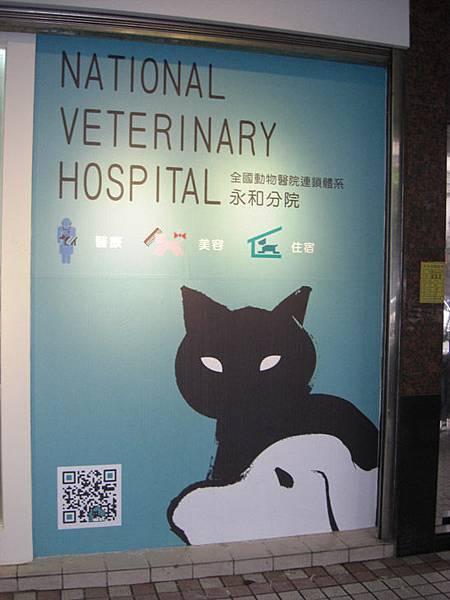 動物醫院-02