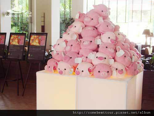 PIG3.jpg