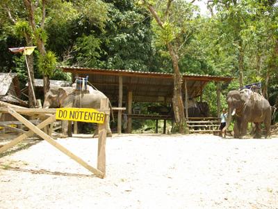 拷索國家公園騎象