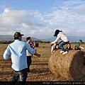 站在牧草卷上一定要小心!