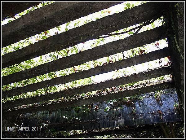 CX3-動物園-003.jpg