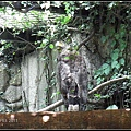 CX3-動物園-002.jpg