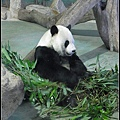 CX3-動物園-020.jpg