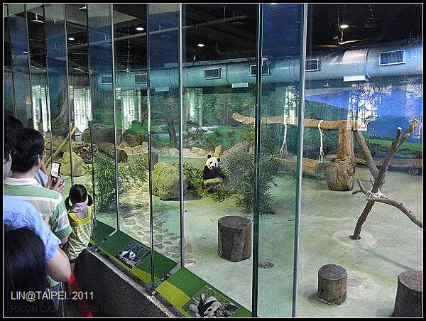 CX3-動物園-019.jpg