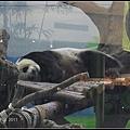 CX3-動物園-016.jpg