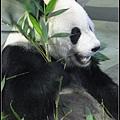 6/23 動物園一日行