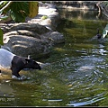 CX3-動物園-026.jpg