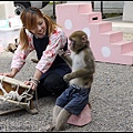 GF3-06-家族旅行inTokyo-淺草與小猴子-004.jpg
