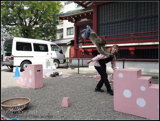 GF3-06-家族旅行inTokyo-淺草與小猴子-010.jpg