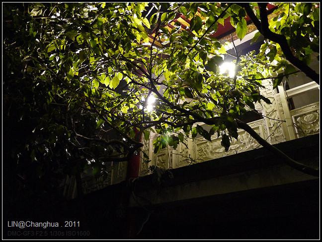 GF3-八卦山大佛夜景-013.jpg