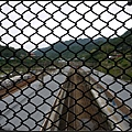 GF3-探訪猴硐貓之村-017.jpg