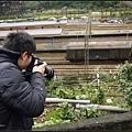 GF3-探訪猴硐貓之村-027.jpg