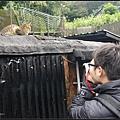 GF3-探訪猴硐貓之村-071.jpg