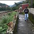 GF3-探訪猴硐貓之村-047.jpg