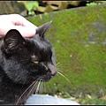 GF3-探訪猴硐貓之村-052.jpg