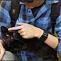 GF3-探訪猴硐貓之村-054.jpg