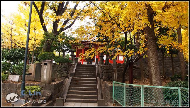 日本單身行第三日之3-007